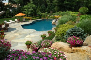 Putting fun in orange county landscape design one home at a time